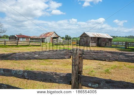 Old farm sheds beyond post and rail fences in rustic rural scene from road in country Australia between Ulmarra and Yamba.