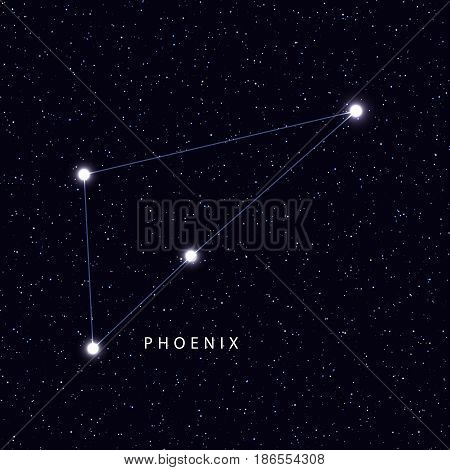 Sky Map with the name of the stars and constellations. Astronomical symbol constellation Phoenix