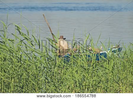 Traditional egyptian bedouin fisherman in rowing boat on river Nile fishing by riverbank grass reeds