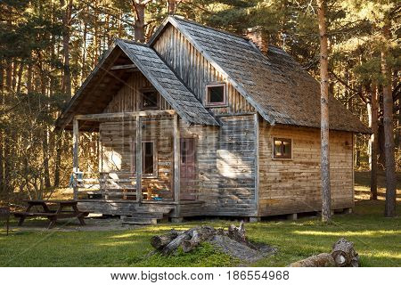 An old wooden house in a forest