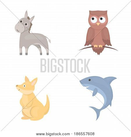 Donkey, owl, kangaroo, shark.Animal set collection icons in cartoon style vector symbol stock illustration .