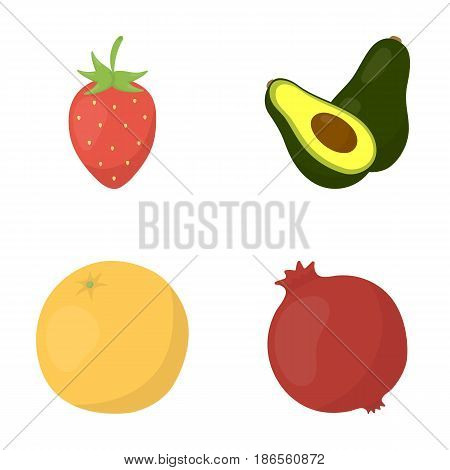 Strawberry, berry, avocado, orange, pomegranate.Fruits set collection icons in cartoon style vector symbol stock illustration .