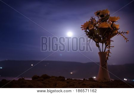 Picturesque Purple Spring Flowers In Glass Vase Standing In A Row On A Dark Background With Stars An