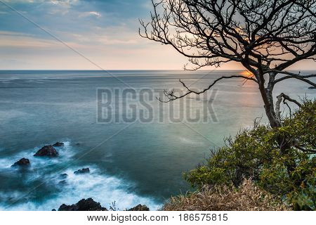 Orange and pink sunset over the Pacific Ocean taken from a cliff with waves around rocks and a dead tree and brush in the foreground - Jaco, Costa Rica