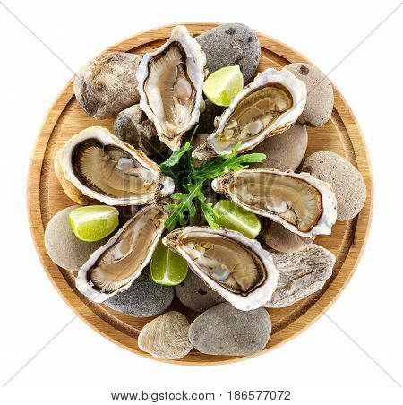 Fresh oysters on wooden board with clipping path. View from above.