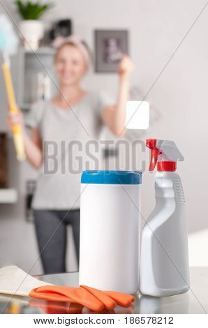 Cleaning Concept. Woman Housekeeper Cleaning In Room