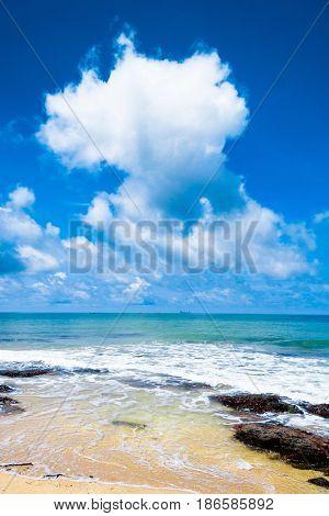 Divine Coastline Sunshine Surf