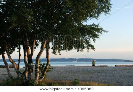 Beach Of Ambleside Park