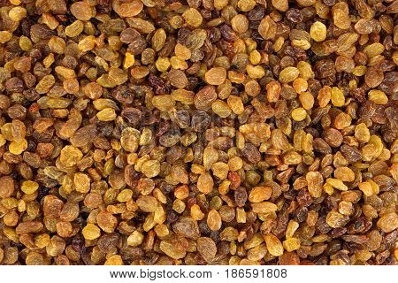 Raisin texture. Raisin background, tasty, natural rich in vitamins