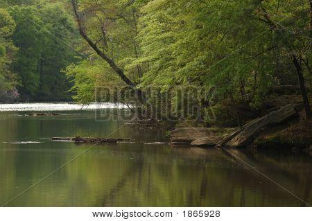 Slow River View