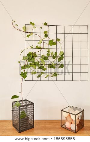 Wire Grid Panel With Cotton Balls