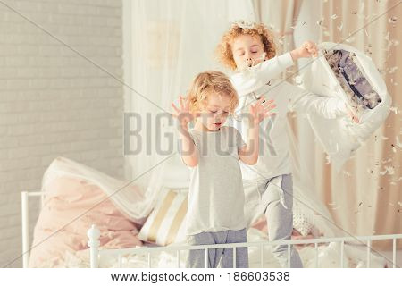 Brothers Having Pillow Fight