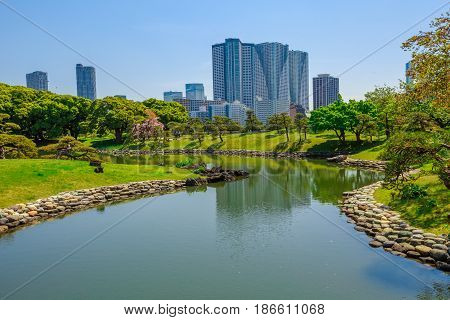 Hamarikyu Gardens is a large and attractive landscape garden in Tokyo, Chuo district, Sumida River, Japan. Oriental japanese garden. The Hama Rikyu is in contrast to the skyscrapers of city.