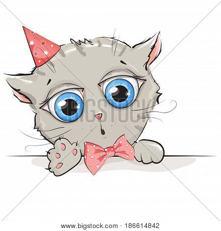 Funny kitten with big blue eyes on white background