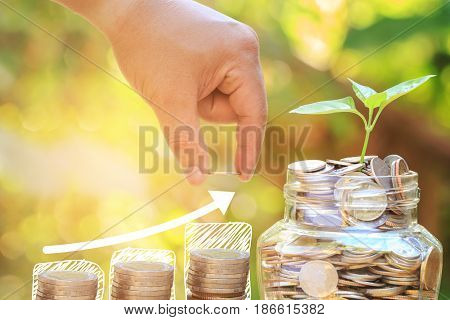 Plant growing in Coins glass jar with Hand of male or female putting coins on money stack step growing growth investment concept for money saving.