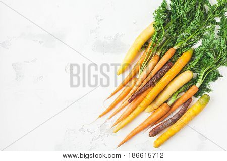 Carrots. Fresh colorful carrots on white background. Flat lay top view