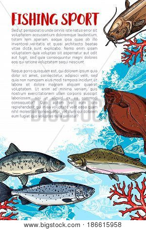 Fishing sport sketch poster with sea fish. Salmon, tuna, sheatfish, flounder and herring fish with copy space for sport club brochure or fishing tournament flyer template design