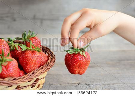 Child takes a strawberry from a basket. Small child holds a strawberry in hand. Healthy summer food for children. Fresh ripe strawberries in a basket. Vintage wooden background. Closeup