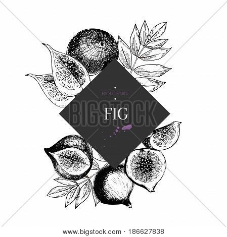 hand drawn smoothie bowls poster. Exotic engraved fruits. Square border composition. Fig whole half slice and leaves. Use for exotic restaurant food partty