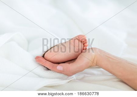 Close-up Partial View Of Mother Holding Foot Of Child Lying Under Blanket, 1 Year Old Baby Concept