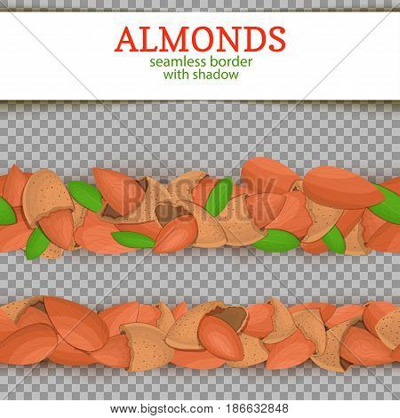 Almond Horizontal seamless border. Vector illustration card. Wide and narrow endless strip with almond nut fruit in the shell whole shelled leaves with shadow transporent. Infinite nut border