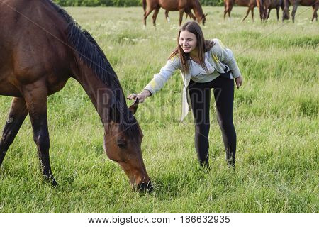 The Girl Is Stroking The Horse. Girl With Horses In The Pasture.