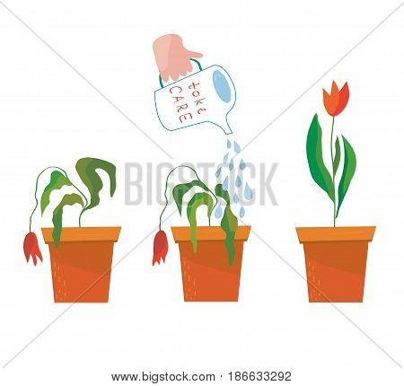 Watering flower illustration - concept of help and care vector graphic