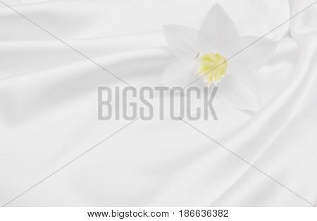 Beautiful white flower on smooth elegant white silk or satin luxury cloth texture can use as wedding background. Luxurious background design