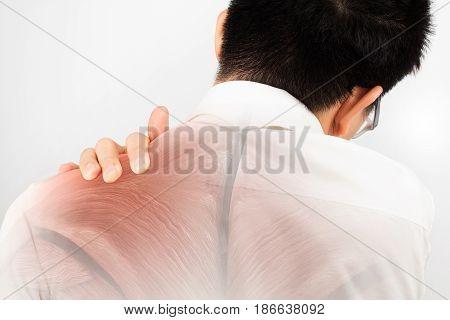 shoulder muscle  injury white background shoulder pain