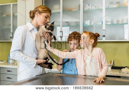 Cute Red Haired Girl Ausculting Cat At Clinic, Doctor Holding Cat