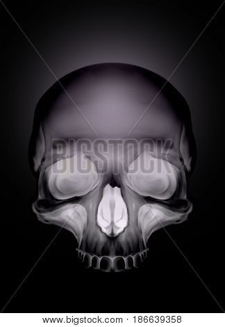 Black graphic human skull with white eyes X-ray style illustration
