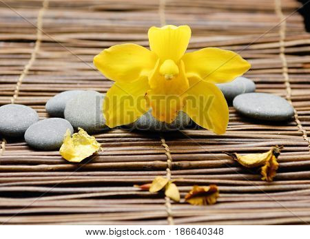 Pile of gray stones with yellow orchid. on mat