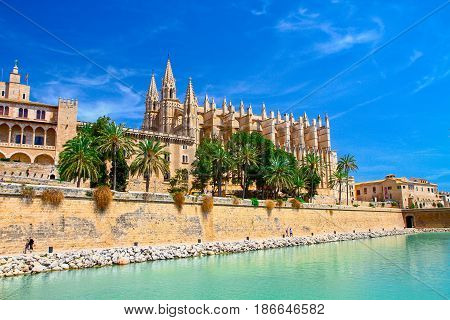 beautiful view of Cathedral of Palma de Majorca