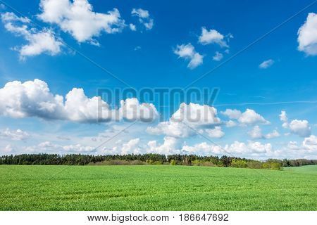 Spring Landscape With Green Meadow, Forest And Blue Sky