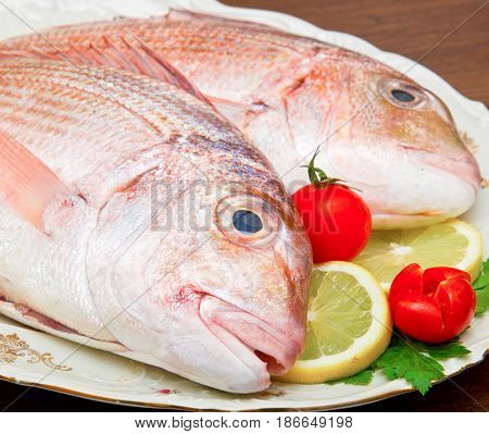 Raw Porgy On White Dish On Wood Background
