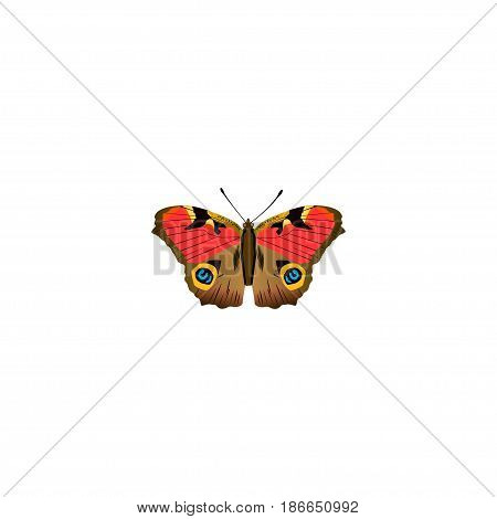 Realistic Precis Almana Element. Vector Illustration Of Realistic American Painted Lady Isolated On Clean Background. Can Be Used As Brown, Butterfly And American Symbols.