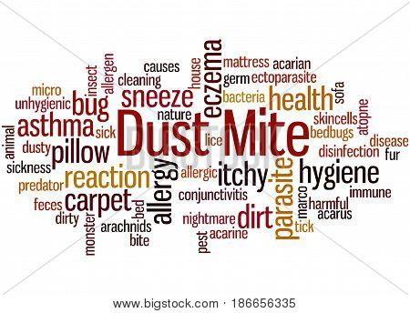 Dust Mite, Word Cloud Concept