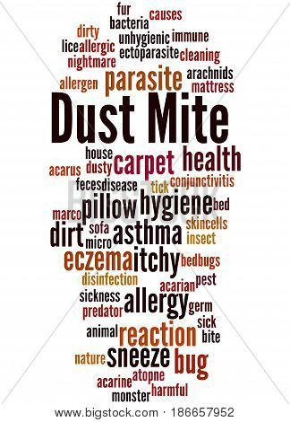 Dust Mite, Word Cloud Concept 5