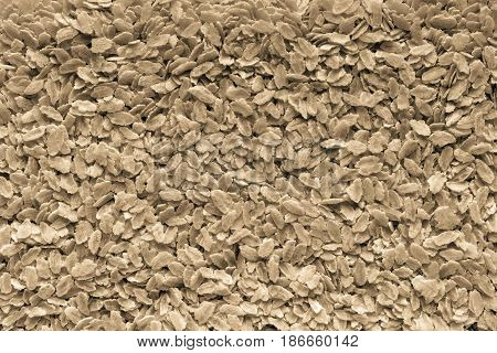 the textured background from granular flakes of an abstract form of color sepia
