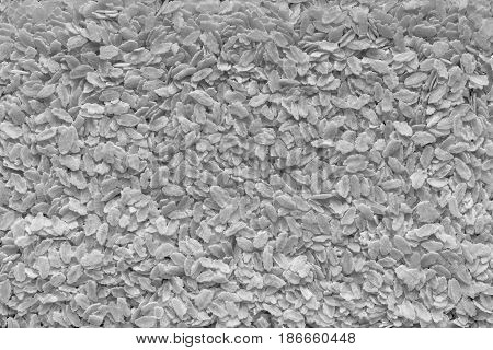 the textured background from granular flakes of an abstract form of light gray color