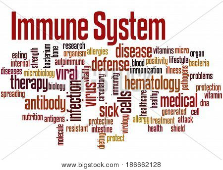 Immune System, Word Cloud Concept