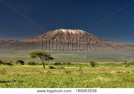 Kilimanjaro, Africa, a large mighty mountain protects the whole continent