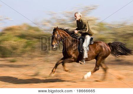 Senior man riding the horse in the bush, panning shot.