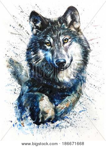 Wolf, animals, watercolor, wild, illustration, graphic, wildlife