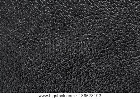 texture of shiny black leather close up