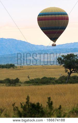 Journey through the sky over the savanna. Masai Mara, Kenya