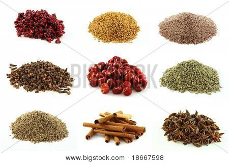 Various kinds of spices - dried pomegranate seeds, fenugreek seeds, Psyllium seeds,whole cloves, whole round chilli peppers, green fennel seeds, lovage (ajwain) seeds, cinnamon sticks, star aniseed