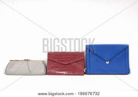 Women's handbag ,purse on white background