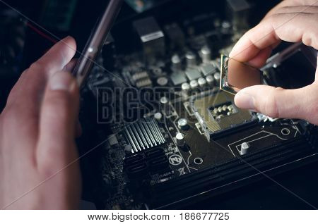 Computer processor. Technician installs the CPU on the motherboard.