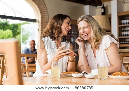 Cheerful mature women enjoying a funny video on mobile phone. Mature friends reading a funny message over smartphone. Mid woman showing a cellphone to her friend while laughing over breakfast.